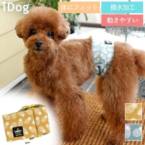 iDog&iCat アイドッグアイキャット マナーベルト パインボーダー 東京 フントヒュッテ 画像 犬 マナーバンド マーキング防止 パイナップル柄 _ 1.jpg