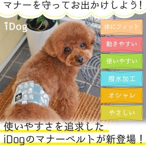 iDog&iCat アイドッグアイキャット マナーベルト パインボーダー 東京 フントヒュッテ 画像 犬 マナーバンド マーキング防止 パイナップル柄 _ 2.jpg