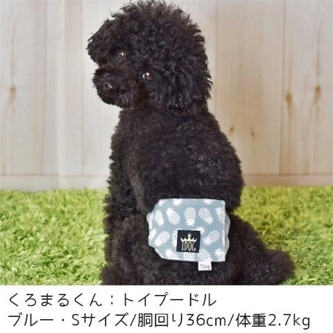iDog&iCat アイドッグアイキャット マナーベルト パインボーダー 東京 フントヒュッテ 画像 犬 マナーバンド マーキング防止 パイナップル柄 _ 6.jpg
