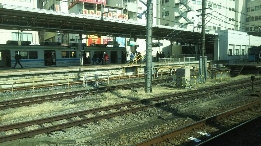 DSC_7309.JPG