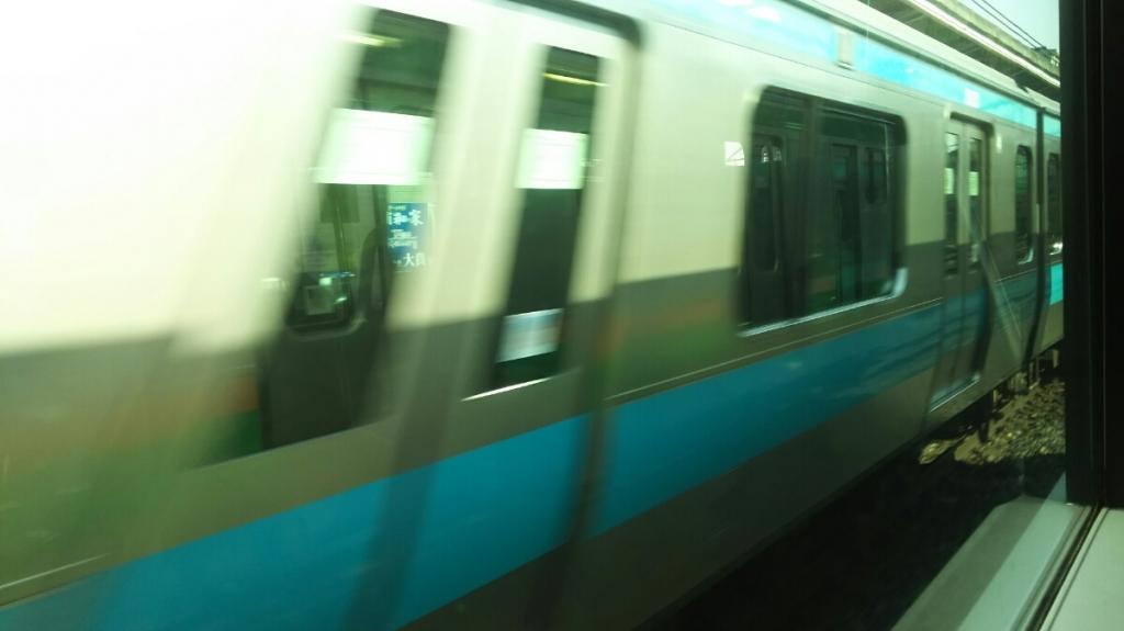 DSC_7320.JPG