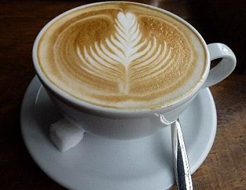 カフェ ソウル ツリー