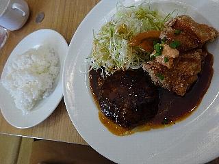 ハンバーグステーキ&若鶏の竜田揚げ(明太マヨネーズ)