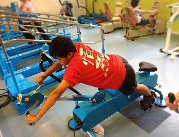 マラソン QOMジム アニマル 体幹トレーニング
