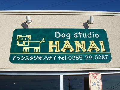 ドッグスタジオ・HANAI(ハナイ)さん�
