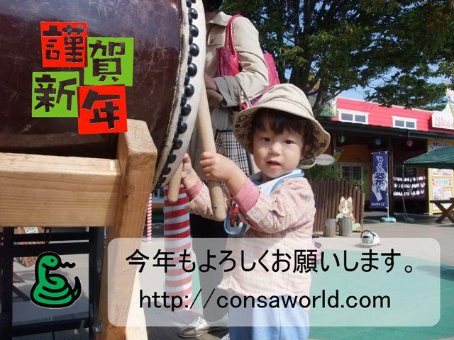 2013年賀状net.jpg