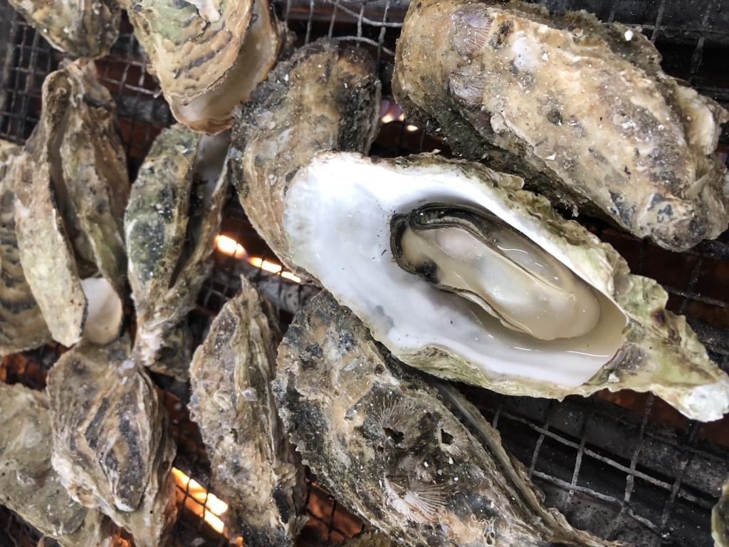 放題 牡蠣 三重 食べ