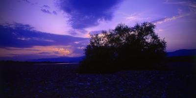 吉野川中流