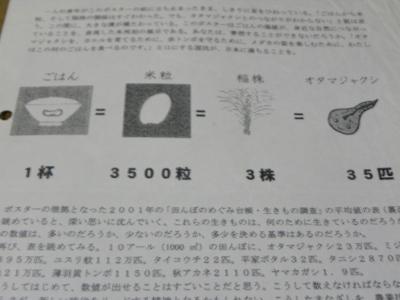 りんご 516.jpg