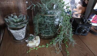 フェイクグリーンとガラス雑貨