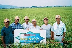 河北南部良質米づくり研究会