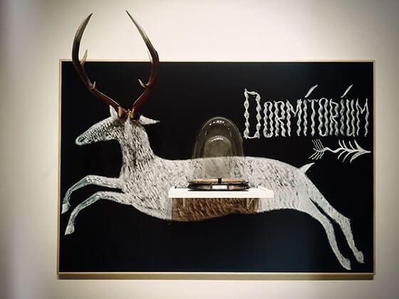 クエイ兄弟《鹿 / デコール(中央部)「粉末化した鹿の精液」の匂いを嗅いでください》