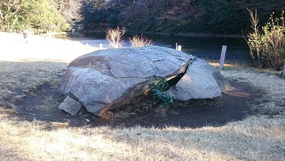 明治神宮・北池の亀石