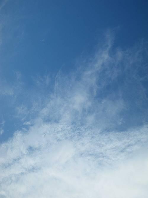 いわし雲?