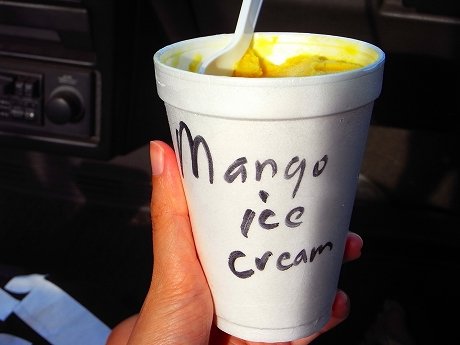 mangoice