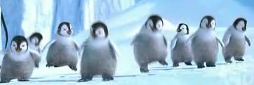 ダンシング子ペンギンたち
