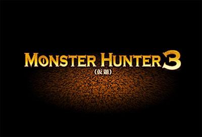 モンスターハンター3(仮題)だってwウキャーーw