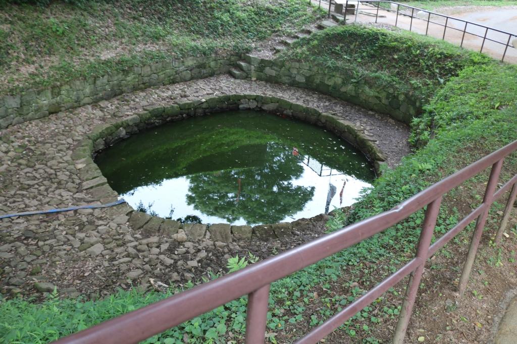 金山城 月の池