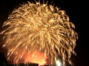 越後三大花火 2009新潟花火