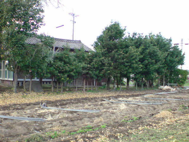 20091211150544.jpg