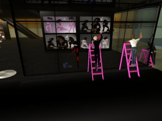 SECOND LIFE CAMP:DILEMA