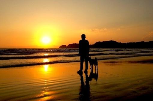 sundown gonzo.jpg