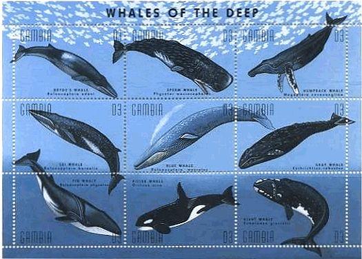ガンビア発行の水棲哺乳類の切手シート