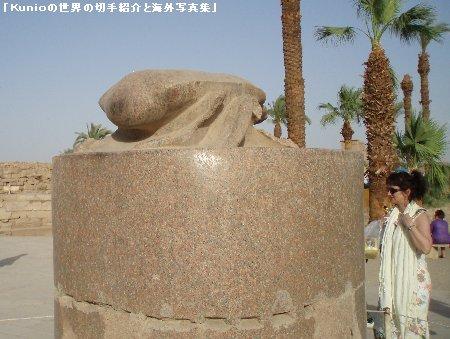 スカラベ(scarab)