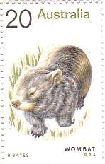 ウォンバット(Wombat)