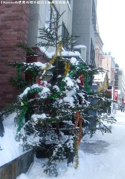 小樽のお店のクリスマスツリー(冬、2009年)