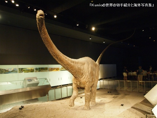 Apatosaurus (アパトサウルス、別名:ブロントサウルス (Brontosaurus) )