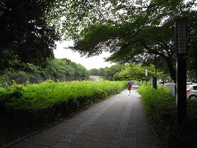 名古屋城 東側