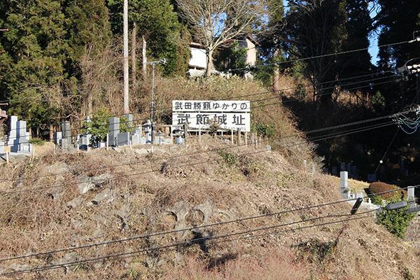 稲武 武節城