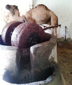 ラクダと石臼 モロッコ雑貨【MOROCCO Marche】