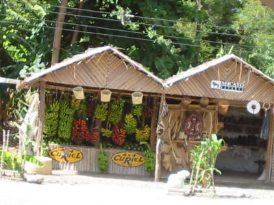 バナナのお店