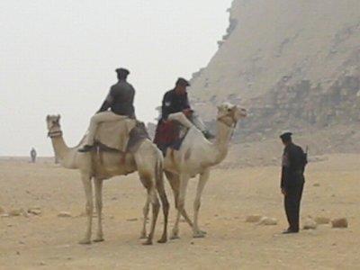 ラクダの騎馬