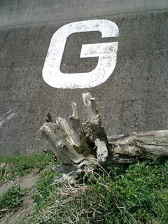 生見海岸名物「G」マーク