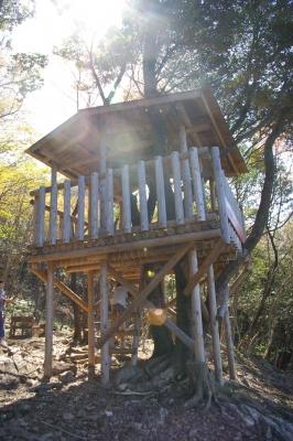 アジロ山のツリーハウス