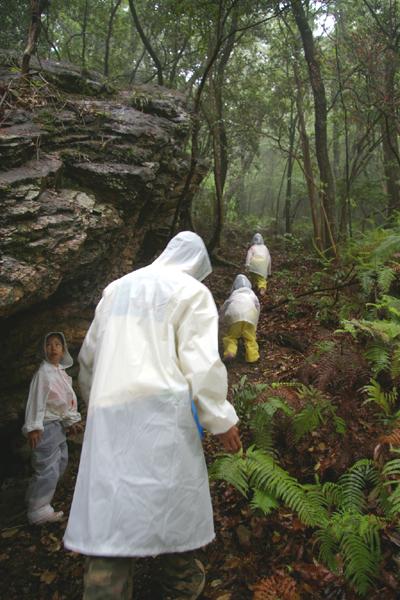 森のようちえんトコトコ列車のお散歩会01