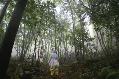 森のようちえんトコトコ列車のお散歩会02
