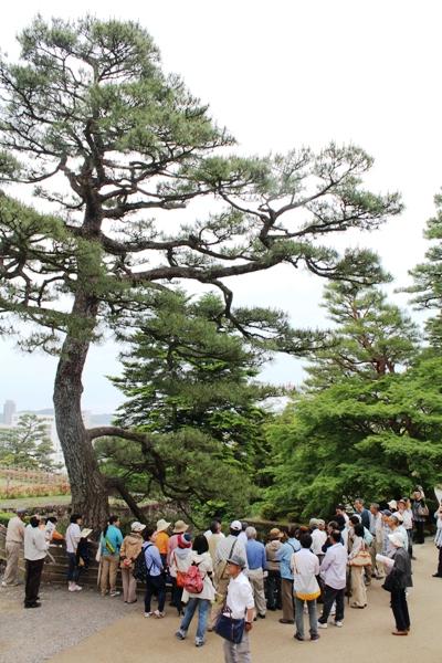 24樹木医セミナー0520-2