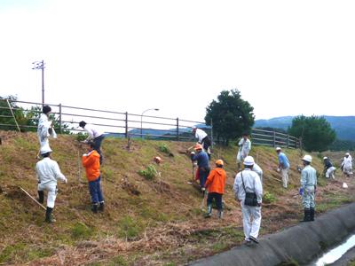 幡多林業事務所植樹03