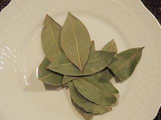 月桂樹の葉3