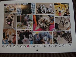 あにまるカレンダー18111