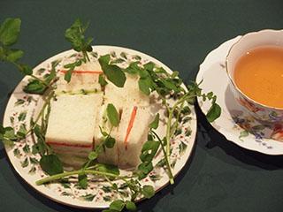 サンドウィッチ1とお茶1812