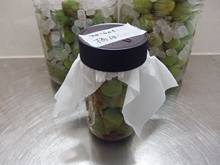 梅蜂蜜漬け2006