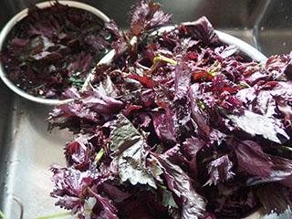紫蘇2006
