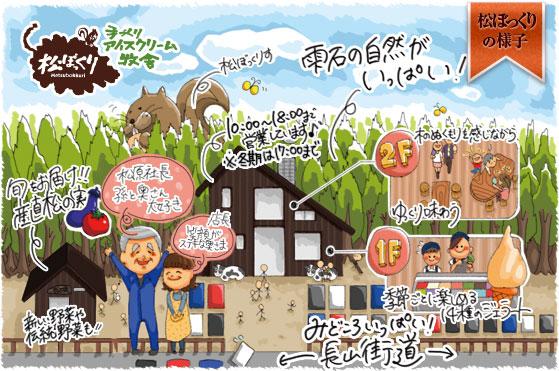 about_matsu.jpg