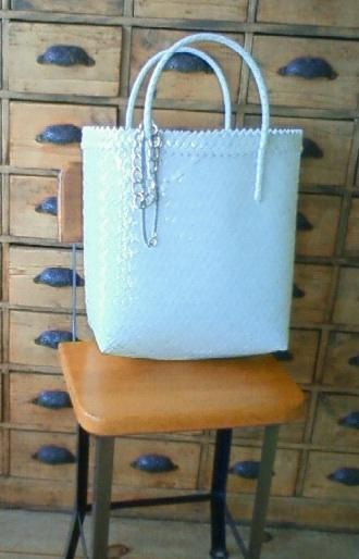 bag100826001.jpg