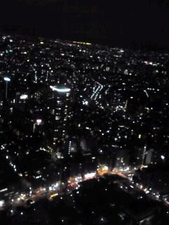 東京都庁の夜景�♪